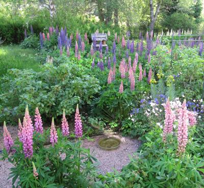 Shenval B&B, Ecosse, Loch Ness, jardin bio © Christian Ganz