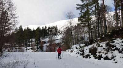 Snowshoeing in Glen Affric near Shenval B&B © Dick MacQueen